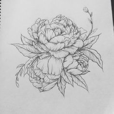 Peony tattoo. Contact me for custom drawings clairestokes93@yahoo.com Or check out my Instagram clairestewartart. Plus my etsy is where it's at! link to my store: https://www.etsy.com/listing/269477486/custom-drawingtattoo-design