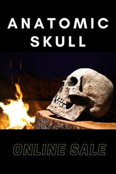 Skull replica realistic detail ! #skull #skullreplica #human #bone #skeleton #calavera #tattoo #inked #skullart #photography #instaskulls #metal #grave #shot #shotglasses #scarynotscary #beautiful #life #death #kutnahora #czechrepublic #czechquality #kostnice #oldage #nothingisforever #mementomori Skull Decor, Skull Art, Calavera Tattoo, Skull Model, Halloween Skull, Memento Mori, Beautiful Life, Skeleton, Lion Sculpture