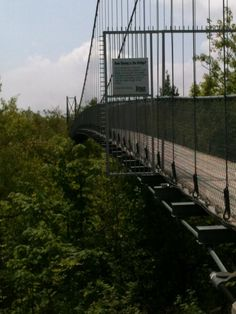 Suspension Bridge Collingwood, Ontario