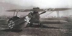 The Phönix D.I was an Austro-Hungarian First World War biplane fighter built by the Phönix Flugzeug-Werke and based on the Hansa-Brandenburg D.I.