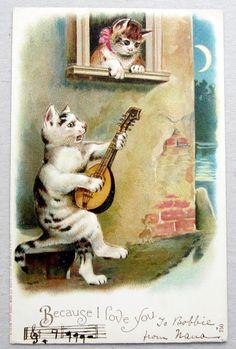 Serenade Postcard