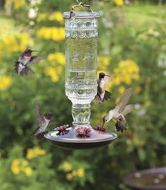 Antique Hummingbird Feeder by Duncraft