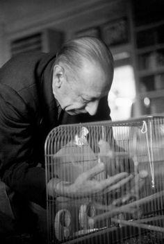 Henri Cartier-Bresson - USA. California. 1947. US composer Igor STRAVINSKY.
