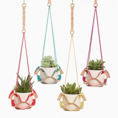 Have just uploaded our new Colour Pop Plant Hangers so they are available from our website for pre order now, yippeee!