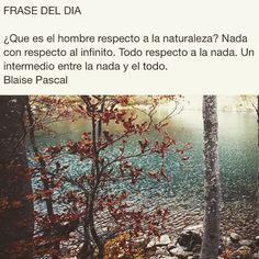 #citas #frases #frasesnaturaleza #frasedeldia #céspedsintetico #jardinería #paisajismo #gardening #landscape #artificialgrass #grass #padel #Valladolid  #flores #plantas #naturaleza