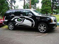 Hawks everywhere!