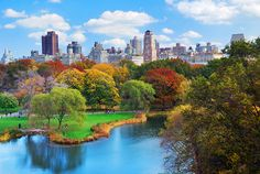 Sunny Central Park NYC #theNYCbible