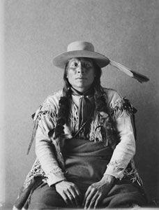 Der Cheyenne Coyote