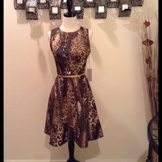 Multi Leopard Print Peplum Dress (NWT) NWT. Multi colorful mixture of brown and dark teal leopard print fabric with gold zipper closure in back. Sleeveless, peplum bottom. *Note: Belt not included. Measures 36' inches bust, 31' inch waist, total length of dress is 35' inch long. From waist down 21' inches long. Made of Polyester and spandex. Size Women's 8 Jennifer Lopez Dresses