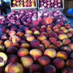 It's peach season on the western slope. Yum!