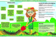 JuRehder - Infográfico sobre agricultura familiar, para o JC Bauru