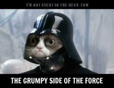 The Grumpy Side of the Force