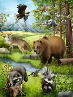 «Animals in the Forest Jungle Animals, Forest Animals, Animals And Pets, Farm Animals Preschool, Paradise Pictures, Teddy Bear Cartoon, Les Gifs, Wild Forest, Bear Art