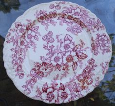 TST Taylor Smith Red Dogwood Fairway Shape Lunch Plate Red Dogwood, Taylor Smith, China Patterns, Vintage Pottery, Red And Pink, Lunch, Plates, Shape, Dishes