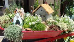 Make a Fairy Garden -Inspiration