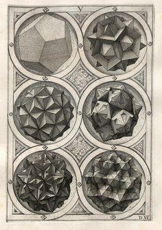 polyhedra, from Perspectiva Corporum Regularium, by Wenzel Jamnitzer, 1568