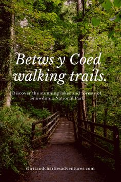 Beautiful walks from the village of Betws Y Coed in Snowdonia National Park British Travel, Travel Uk, Just Keep Walking, Snowdonia National Park, North Wales, Places Of Interest, Wales Snowdonia, Anglesey, Travel Guides