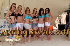 www.SpringBreak.wtf  top Domain for a SpringBreak site where you can post your most weird pics and vids about your Spring Break ..  .wtf is a new domain and means ...what the fuck  Make your Website, your Onlinestore unique. everybody using boring .com .org .info and so on ....