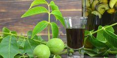 Noc na svatého Jana chápali naši předkové jako magickou. Během ní trhali nezralé ořechy, z nichž připravovali svatojánský likér. Chcete si ho také vyrobit? Vyzkoušejte náš recept na ořechovku z vodky, který vám bude chutnat, ať už ořechy natrháte kdykoli.