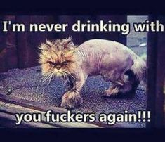 31 lol so True Funny Pictures