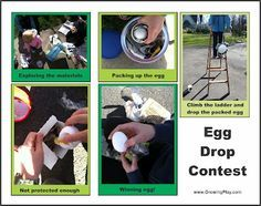 Egg drop contest requires players to build a nest first...love it!