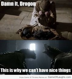 Drogon screwed it for everyone - Game Of Thrones Memes