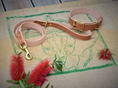 Dog Collars & Leashes, Leather Dog Collars, Dog Leash, Unique Animals, Brass Buckle, Collar And Leash, Pet Gifts, Dog Names, Your Dog