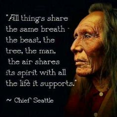 native american spirituality native american quotes native american pictures
