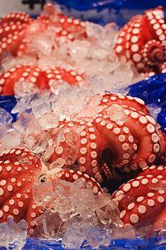 Octopus at Tsukiji fish market, Tokyo, Honshu Island, Japan, #japó