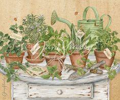 Herbs   Jane Shasky