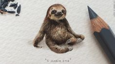 150421160513-paintings-for-ants---sloth-exlarge-169