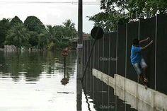 Enchente em Porto Velho, Rondônia, na Amazônia. Foto: Odair Leal/Demotix -  © 2014 Odair Leal. TODOS OS DIREITOS RESERVADOS.
