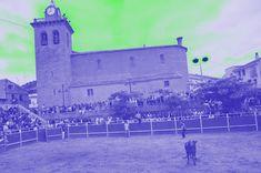 Santacara: Vacas de Santos Zapateria - (4) Saints, Cows, September, Fiestas
