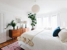 Fiddle Leaf Fig Plant in bedroom.