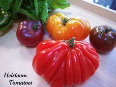 A Blast from the Past...Heirloom Tomatoes - Proud Italian Cook