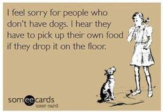 I feel sorry for people who don't have dogs...