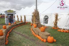 A beautiful fall tent wedding entrance. Incorporating the hay, cornstalks, and pumpkins of the season.