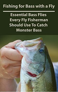 88 best fishing book images on pinterest fishing books fishing fishing for bass with a fly essential bass flies every fly fisherman should use to catch monster bass fandeluxe Choice Image