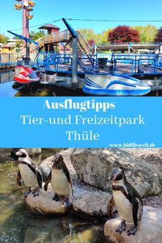 Ausflug in den Tier-und Freizeitpark Thüle, Tierpark, Zoo, Ausflug, Kinder, Familie, Familienalltag, Freizeit Aktivität, Freizeitpark, Spielplatz, Ferien, Holidays