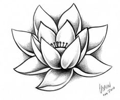 Unique Dessin Fleur De Lotus Fond D'écran - From the thousand images on-line in relation to dessin fleur de lotus, we all choices the best collections together Art Drawings Sketches, Easy Drawings, Tattoo Drawings, Body Art Tattoos, Pencil Drawings, Lotus Drawing, Floral Drawing, Plant Drawing, Lotus Flower Drawings