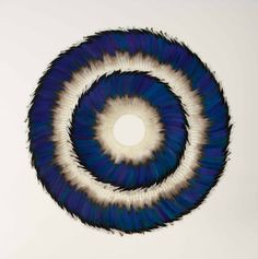 SWELL, 2014, Kate MccGwire, Mallard speculum feathers on archival board