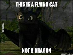 But ADORABLE all the same!!! Shouldn't all dragons act like flying cats? ;D