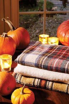 autumn, blankets, candles, comfy, cozy, fall, halloween, pumpkins
