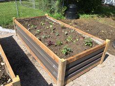 Raised garden beds from scrap