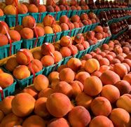 Brennan's Market - The Freshest Produce Around - Chin Drippin' Peaches