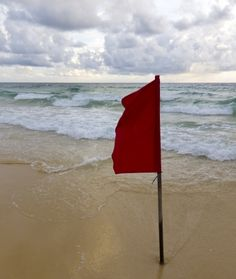 "FANTASTIC article from Psychology Today, Dating Red Flags for Women"". The Maya Angelou quote rings very true, ""the first time someone shows you who they are, believe them. Psychology Quotes, Psychology Today, Dating Red Flags, Listen To Your Gut, Maya Angelou Quotes, Narcissistic Behavior, Time To Move On, First Dates, Set You Free"