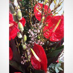 Edwardallenflowers are always beautiful flowers