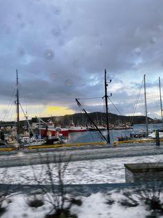 Moloen i Bodø💨 Bodo, Sailing Ships, Norway, Random, Casual, Sailboat, Tall Ships