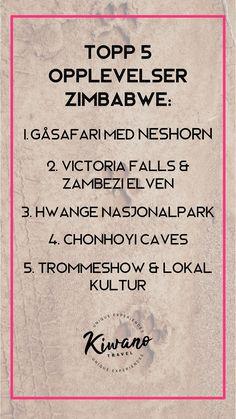 Topp 5 opplevelser du må legge inn i din reise bucketliste for Zimbabwe. Zimbabwe, Victoria Falls, Safari, gåsafari med neshorn, elven Zambezi, Hwange nasjonalpark, Painted Dog Conservation, Chonhoyi caves, trommeshow på The Boma restaurant. Victoria Falls, Zimbabwe, Tattoo Quotes, Math, Travel, Culture, Viajes, Math Resources, Destinations