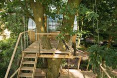 ship-ladders-access-tree-house-egg-shaped-sides-4-decks.jpg